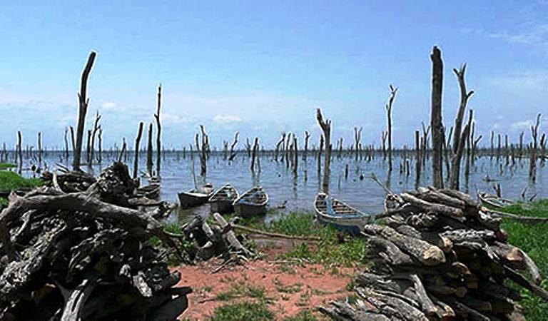 Lake Volta Sunken Forests