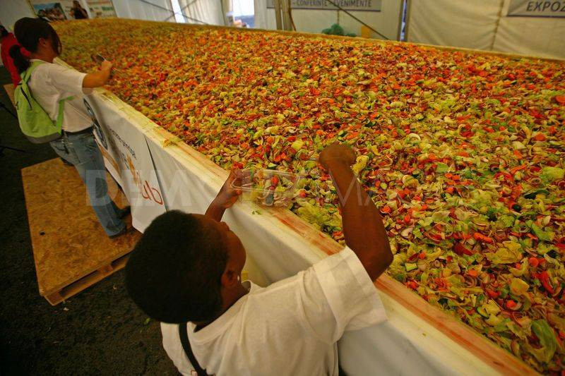 World's Largest Food Salad 2