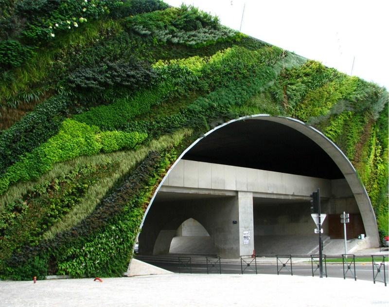 Moss Graffiti Moss Gardens