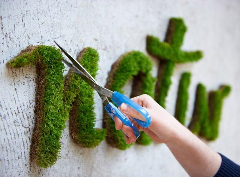 Moss graffiti moss natur