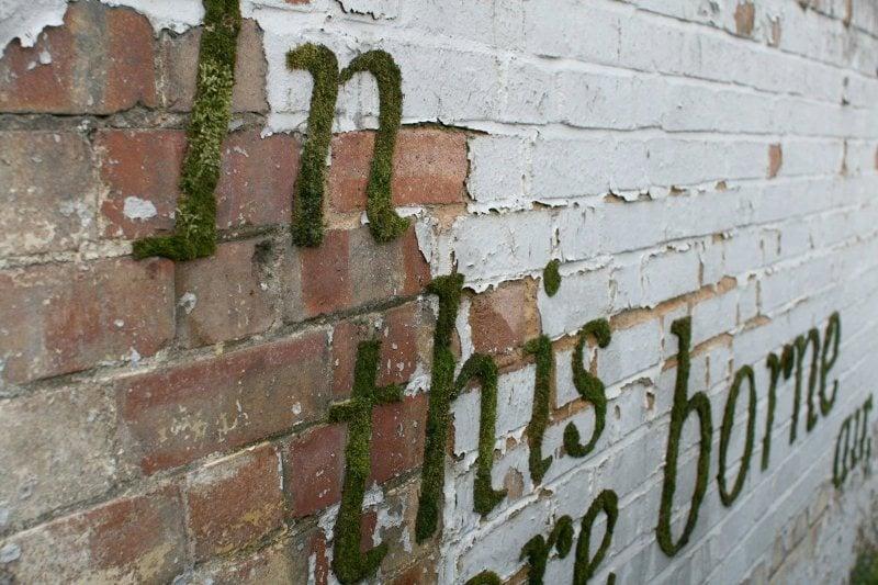 Moss Graffiti Photos