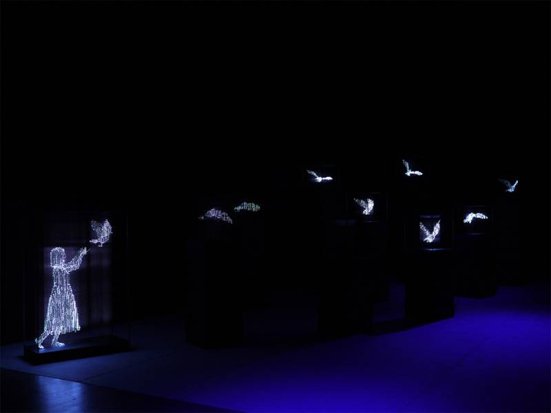 Fascinating Light Art Tojiki 3