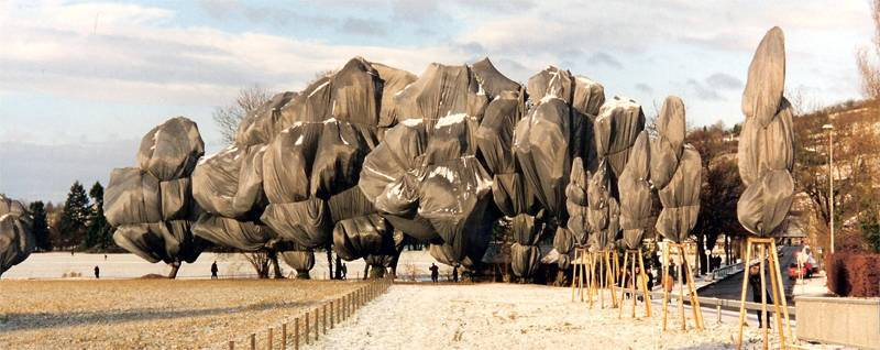 Incredible Christo Works Trees
