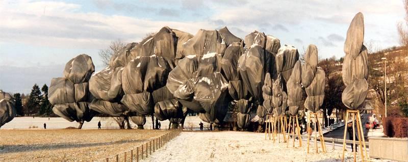Incredible Christo Works Trees