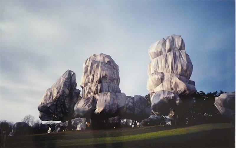 Incredible Christo Works Trees 3