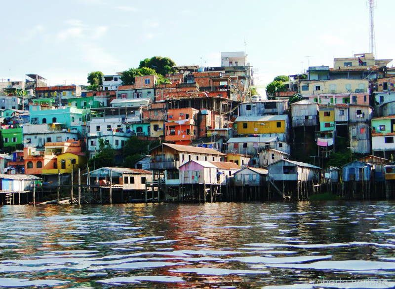 Jungle City Manaus