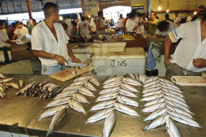 Jungle City Manaus Mercado