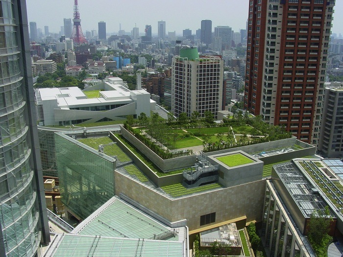 Green Design Green Roof Boston Today's Best Green Design Trends
