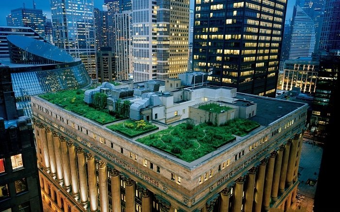 Green Design Green Roof Chicago City Hall