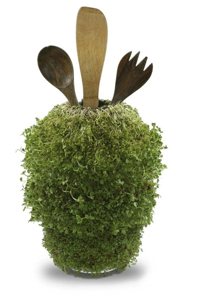 Best Green Designs