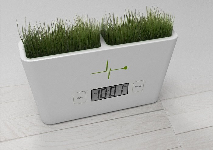 Organic Clock