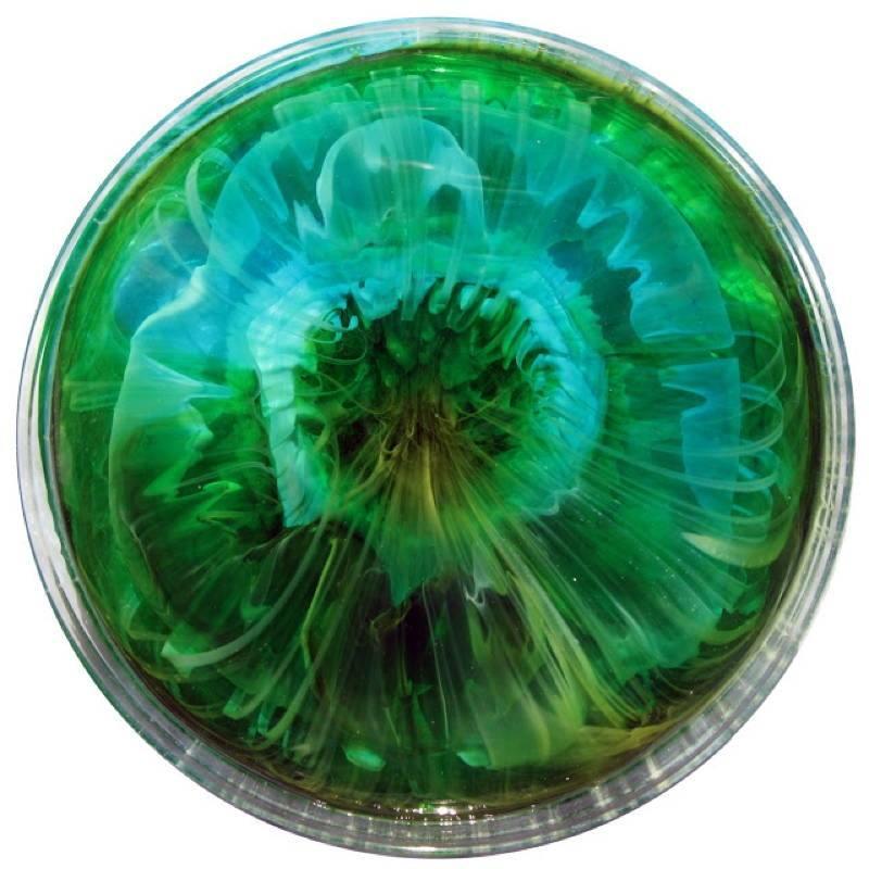 Petri Art 1