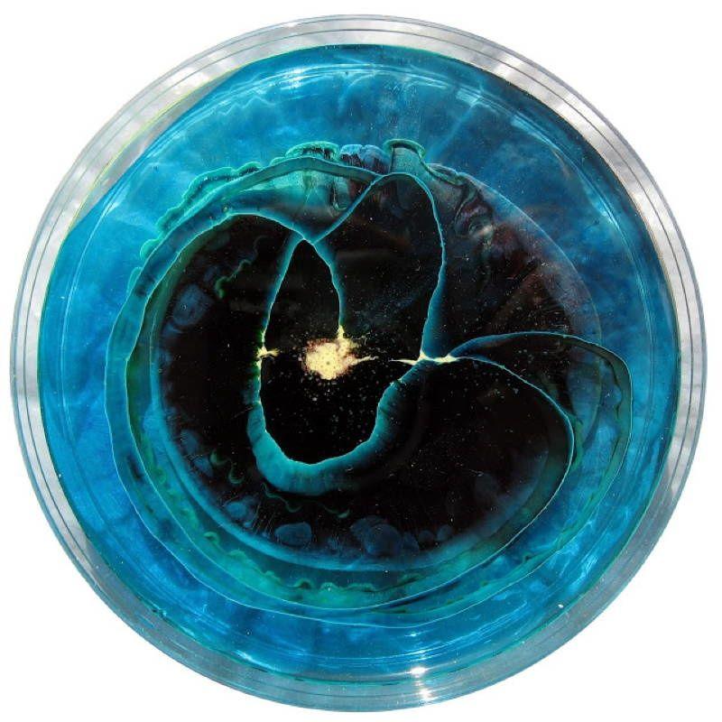 Petri Art 3