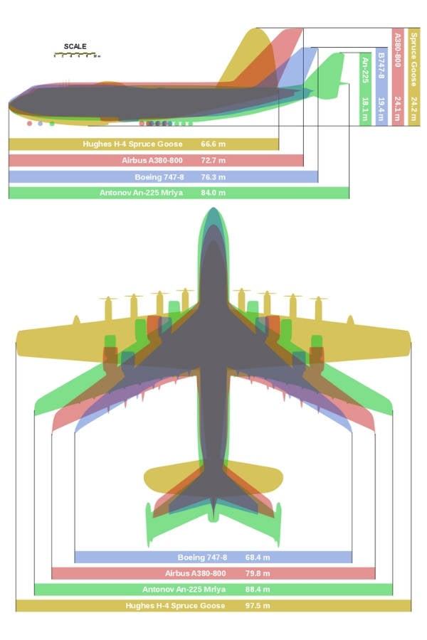 Spruce Goose Size Comparison