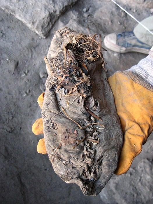 Prehistoric Shoes