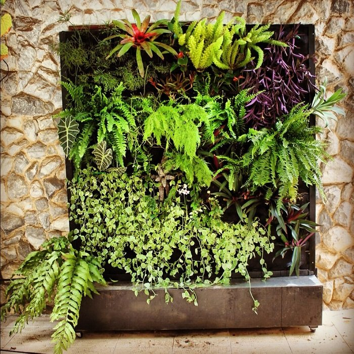 Vertical Gardens An Up And Coming Green Trend