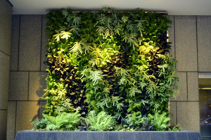 Vertical Gardens Picture