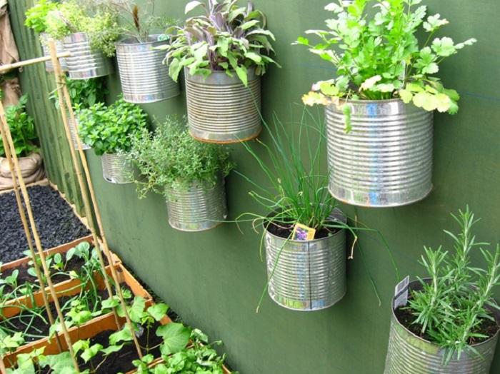 Vertical Gardens Photograph