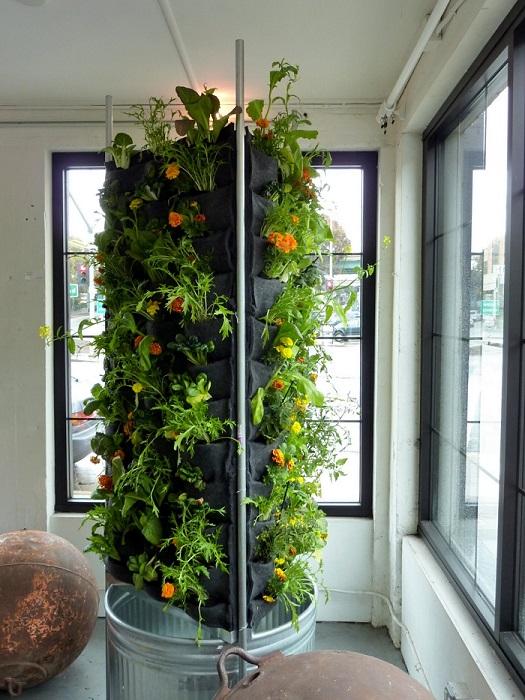 Vertical Gardens House