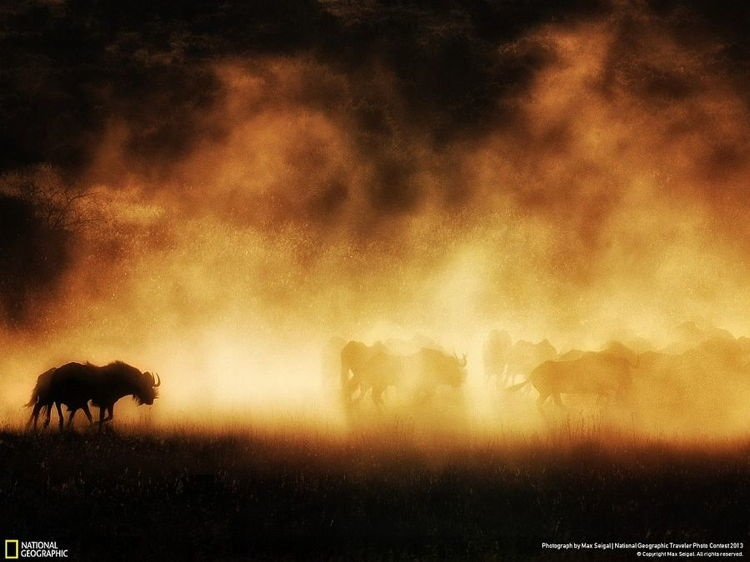 National Geographic Contest 3