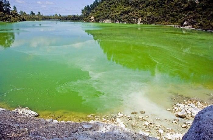 Cool Pools Green Lake