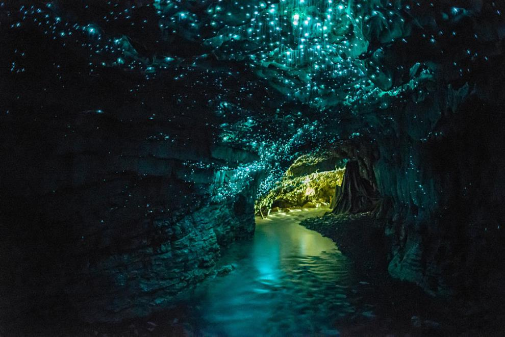 Glow Worm Cave New Zealand