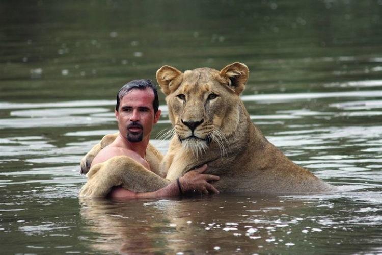 Lion Whisperer 3
