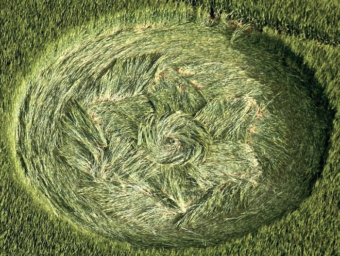 Are Crop Circles Real