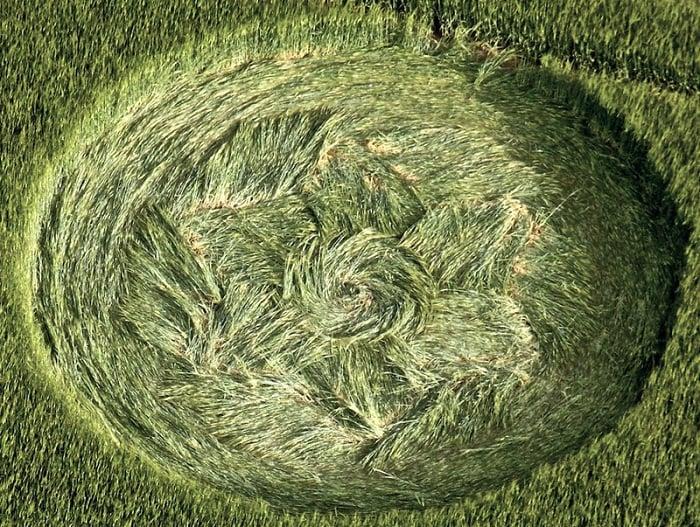 Are Crop Circles Real