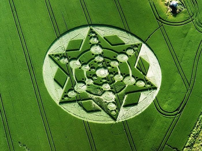 Crop Circles Wilshire