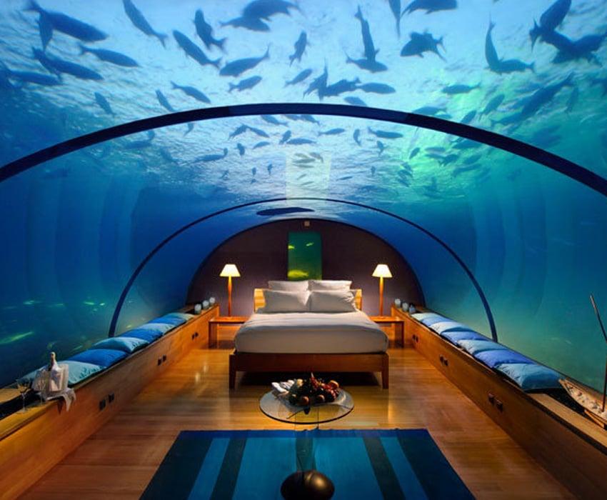 Aquarium Art