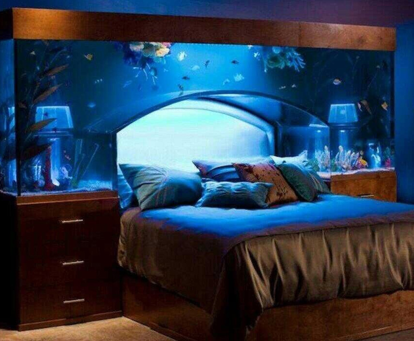 The world 39 s most astonishing aquarium art for Bedroom fish tank