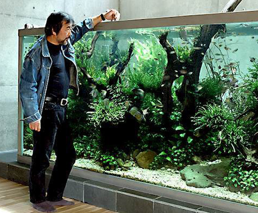 Aquarium Art Takashi Tank