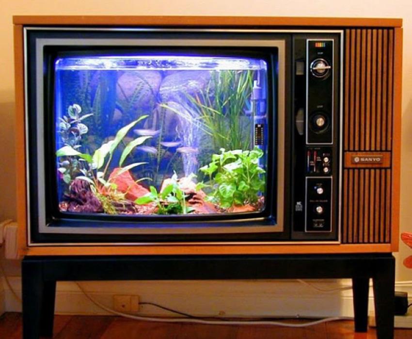 Aquarium Art Television Tank