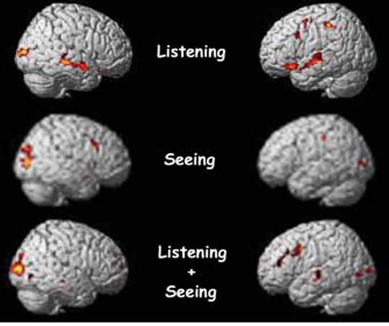 Internet Damage Multitasking Brain