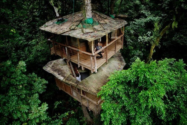 Sustainable Treehouse 3