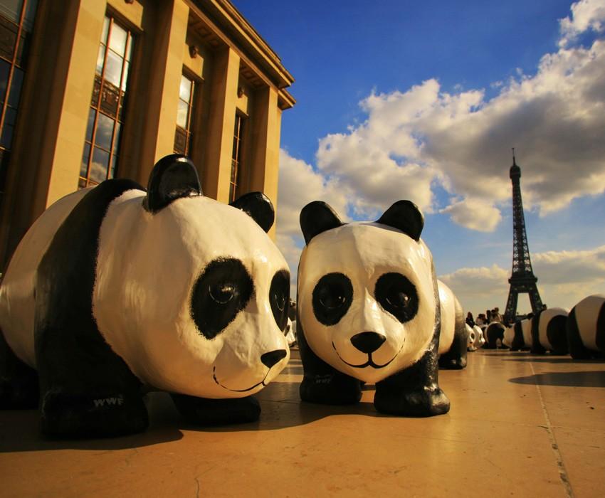 Bizarre PR Stunts Paris Pandas 2