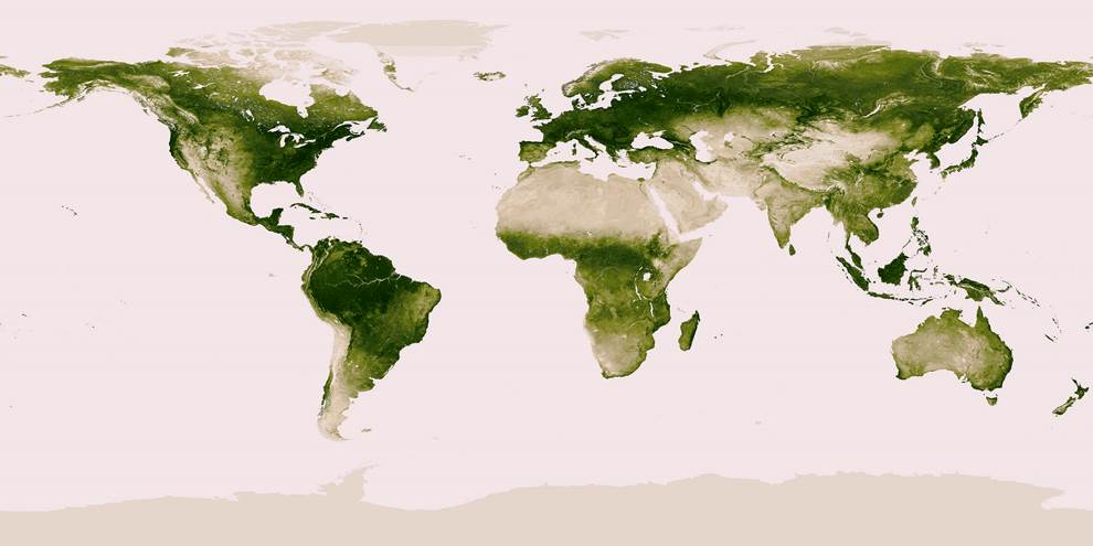 Earths Vegetation Map