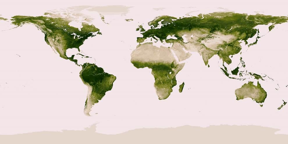 Earths Vegetation Map