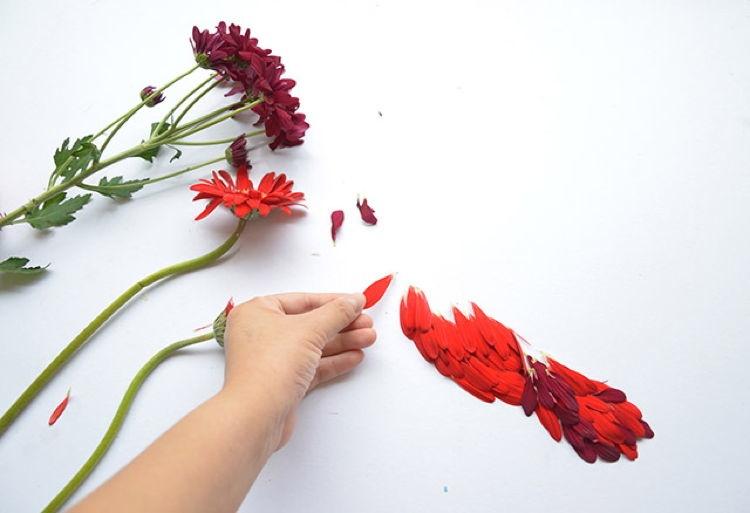 Flower Birds 3