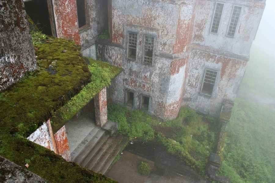 Overgrown Buildings