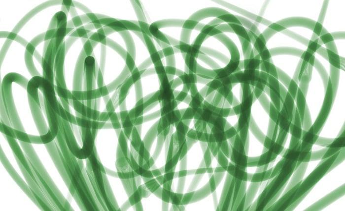 X Ray Onion Tubers