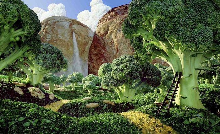 Food Art Carl Warner Broccoli