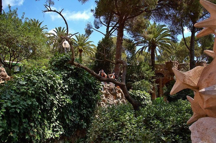 Park Guell Greenery