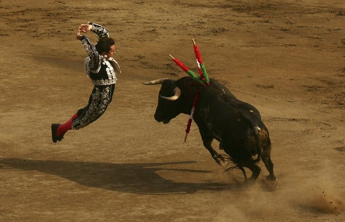 Legacy Of Bullfighting Bandarillas
