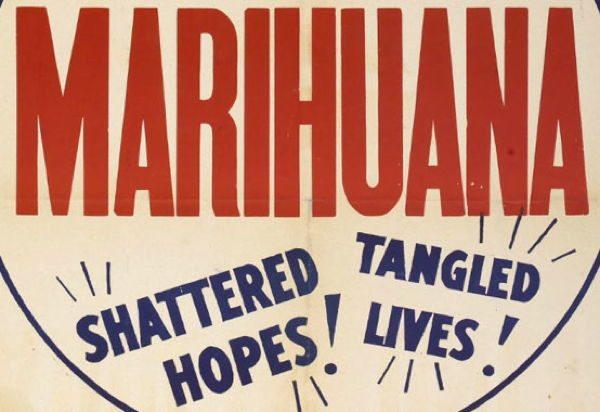 Marijuana Propaganda Shattered Hopes
