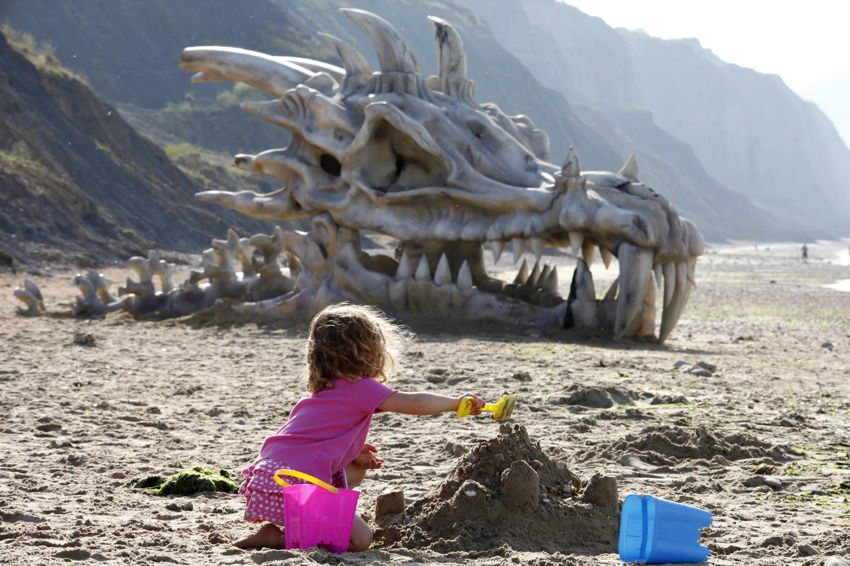 Bizarre PR Beach Dragon