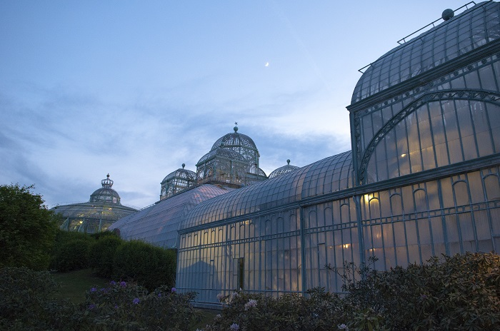 Photograph Of Laeken Greenhouse