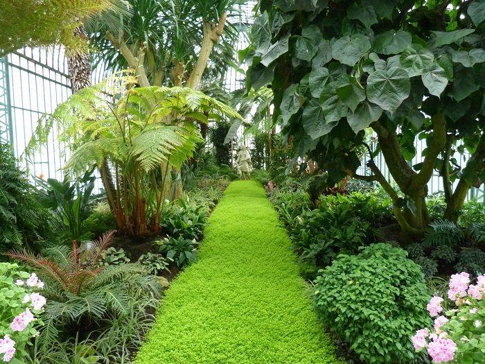 Laeken Greenery