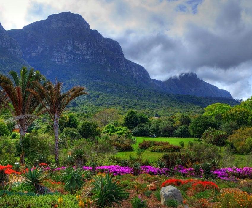 Kirstenbosch Mountain
